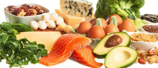 Alimentation protéine